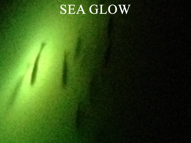about us   underwater fishing lights, Reel Combo